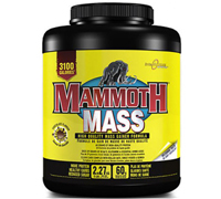 mammoth-mass-5lb-chocolate2.jpg