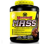 mammoth-mass-5lb-rich-chocolate